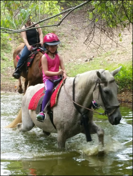 Trail Rides at Peavine Creek Farm